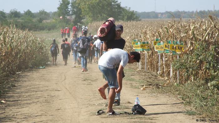 Kroatien Serbien Grenze Flüchtlinge