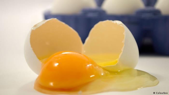 Symbolbild gepelltes Ei