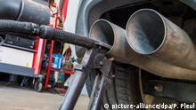 Eine Sonde eines Gerätes zur Abgasuntersuchung für Dieselmotoren steckt im Auspuffrohr eines VW Golf 2.0 TDI (Baujahr 2012), fotografiert am 21.09.2015 in einer Werkstatt in Frankfurt (Oder) (Brandenburg). Im Skandal um manipulierte Abgastests muss VW die Notbremse ziehen. Vorerst wird der Verkauf von Diesel-Autos mit Vierzylinder-Motoren in den USA gestoppt. Ein Sprecher des Konzerns bestätigte heute entsprechende Medienberichte. Betroffen seien Modelle von VW und Audi. Die Wolfsburger hatten gestern eingeräumt, dass Abgaswerte von Diesel-Autos in den USA für Fahrzeugtests manipuliert worden waren. Foto: Patrick Pleul/dpa (recrop)