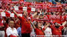 USA Liverpool FC Fans in Charlotte