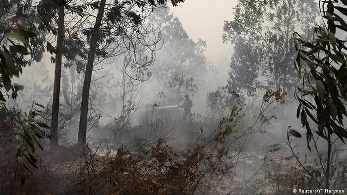 Indonesien Waldbrände auf Sumatra (Reuters/YT Haryono)