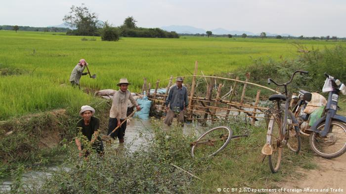 Maintaining irrigation system Cambodia