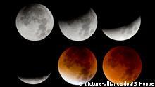 القمر .. أسطورة جمعت بين الفن والأدب والشعر والفلك