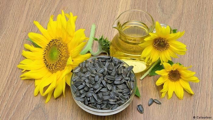 Sonnenblumenkerne und Blumen