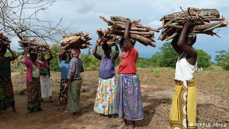 The cookstove means women have to spend less time carrying wood