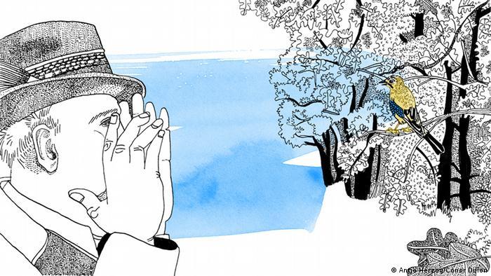 Wie man in den Wald hineinruft, so schallt es heraus Illustrationen Kultur DW exclusiv Projekt Sprichwörter