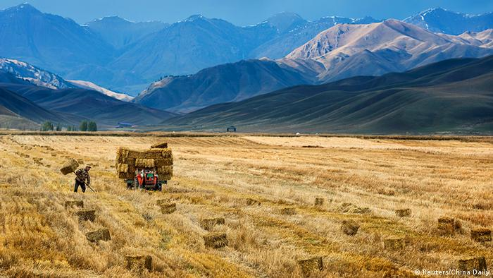 A farmer and tractor on a field in Xinjiang