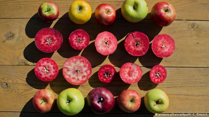 Red-fleshed apples (Photo: dpa - Bildfunk)