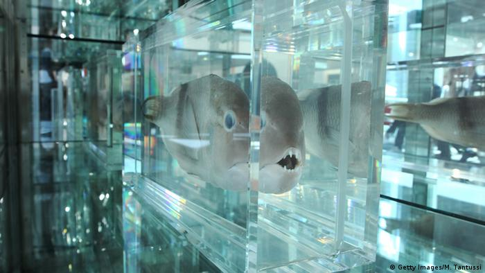 Bildergalerie Damien Hirst Something and Nothing