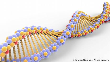 DNA helix illustration (Imago/Science Photo Library)