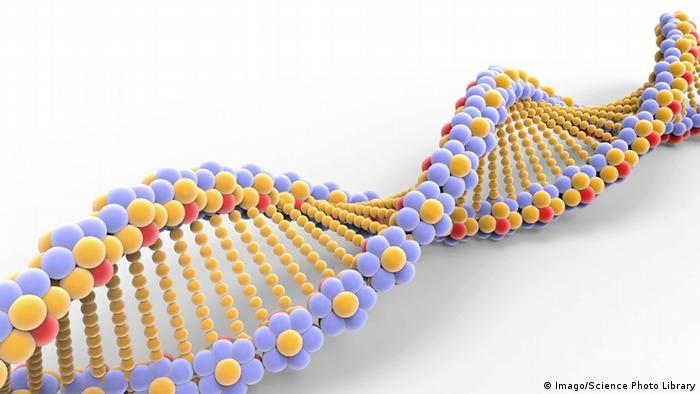 Struktura deoksiribonukleinske kiseline DNK