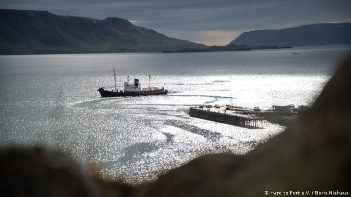 Sea Shepherd pulls plug on Japan whale hunt