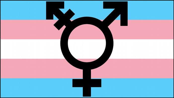 Symbolbild Transgender Logo Fahne