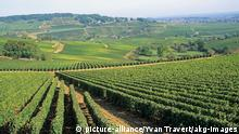 Europäische Weinanbaugebiete Frankreich Burgund