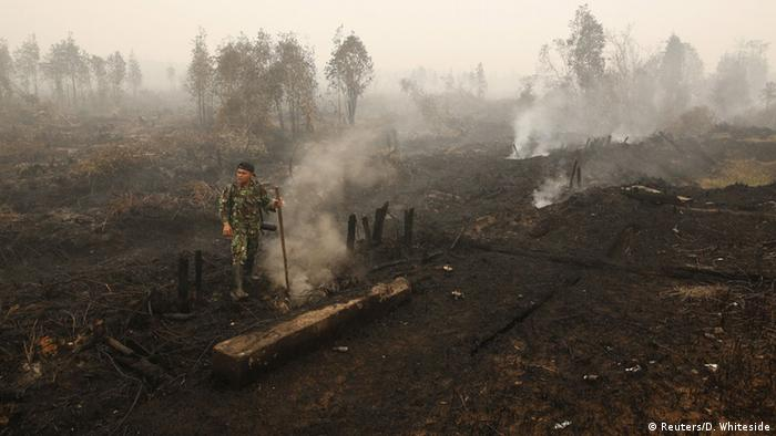 An Indonesian soldier checks on a peat land fire near Palangkaraya, Central Kalimantan, Indonesia (Photo: Reuters/D. Whiteside)