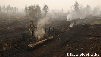 Indonesien Smog Rauch durch Brandrodung
