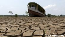BdW Global Ideas Bild der Woche KW 43/2015 Brasilien Dürre