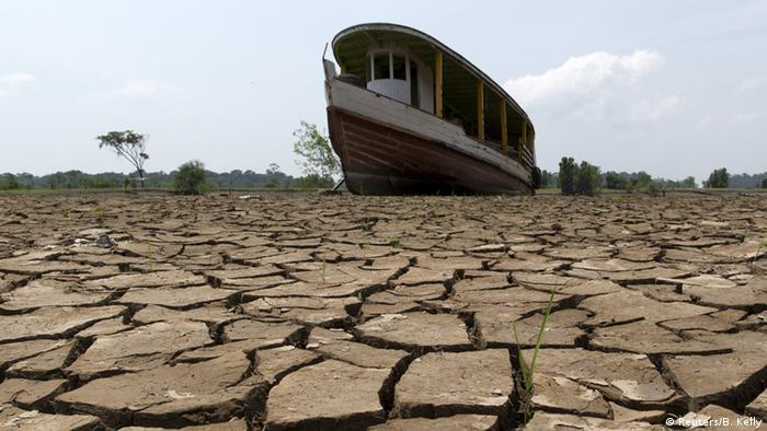 Cambio climático provoca caos en la Amazonía