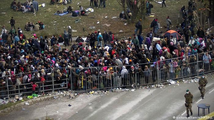 Migrants Standing along steel fences