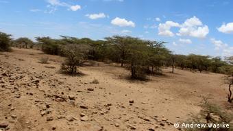 Kenia Afrika Arid Turkana Dürre