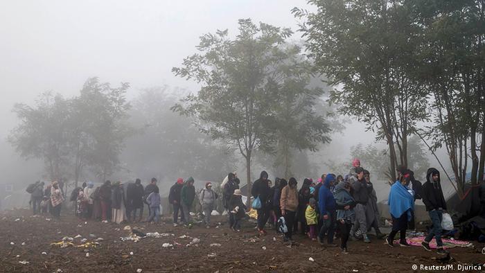 Беженцы на пути из Сербии в Хорватию