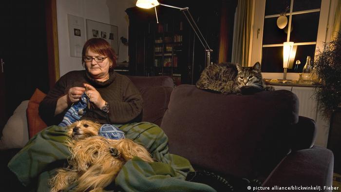 Gemütlichkeit Sofa Frau Stricken Hund