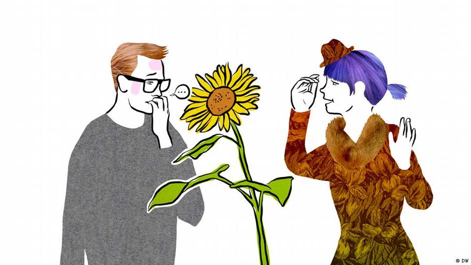 Etwas durch die Blume sagen