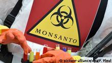 03.04.2014 *** ARCHIV - Eine Umweltaktivistin trägt ein Schild mit der Aufschrift «Monsanto» vor Beginn der Agrarministerkonferenz am 03.04.2014 in Cottbus (Brandenburg). Monsanto ist ein US-Unternehmen, das Saatgut und Herbizide produziert und seit den 1990er Jahren Biotechnologien zur Erzeugung gentechnisch veränderter Feldfrüchte einsetzt. Foto: Patrick Pleul/dpa (zu dpa WHO-Agentur stuft Glyphosat als wahrscheinlich krebserregend ein vom 30.07.2015) +++(c) dpa - Bildfunk+++ Copyright: picture-alliance/dpa/P. Pleul