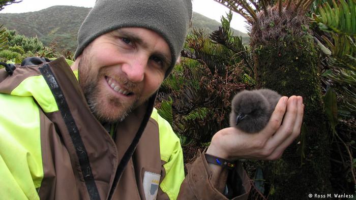 Ross Wanless ist der Seabird Conservation Programme Manager BirdLife International Marine Programme