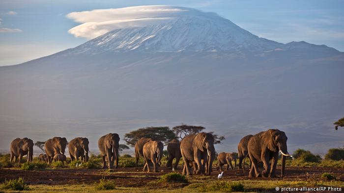 Mount Kilimanjaro, Tanzania (Picture: picture-alliance/AP Photo)