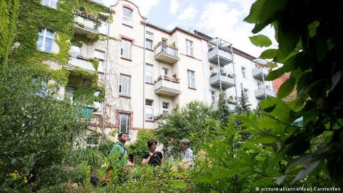 Se anima a los dueños de edificios a poner plantas en los patios interiores, típicos de las construcciones de Berlín.