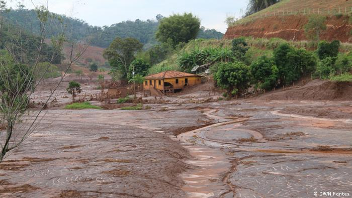 Mining sludge covering ground after dam break (Photo: Nadia Pontes)