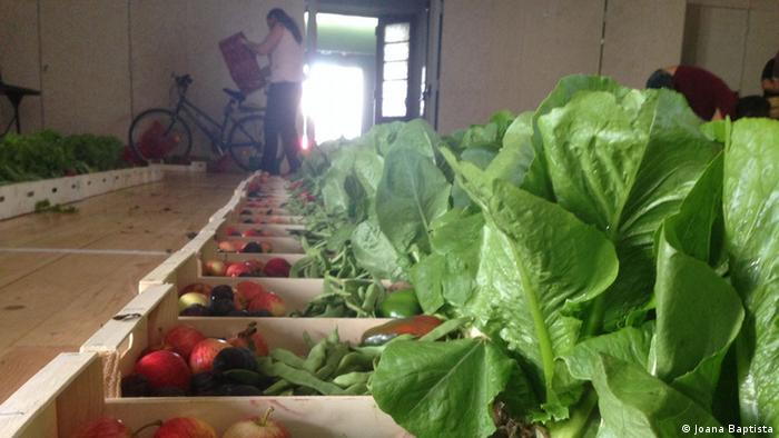The Fruta Feia project saves 4,000kg of food waste each week