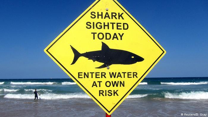 BdW Global Ideas Bild der Woche KW 48/2015 Australien Schild Hai Warnung