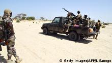 Soldaten aus Niger bekämpfen Boko Haram