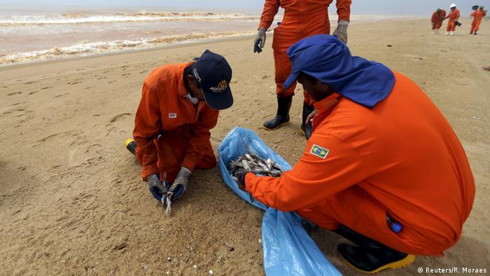 Helfer vergraben Fische am Strand (Foto: Reuters/R. Moraes)