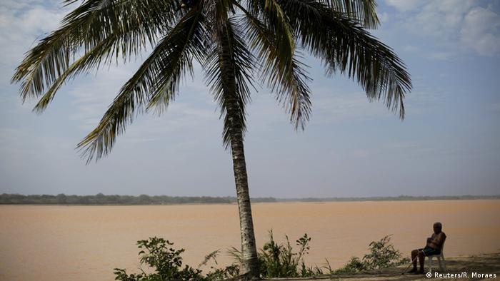 Palme vor braunem Atlantik (Foto: Ricardo Moraes/reuters)