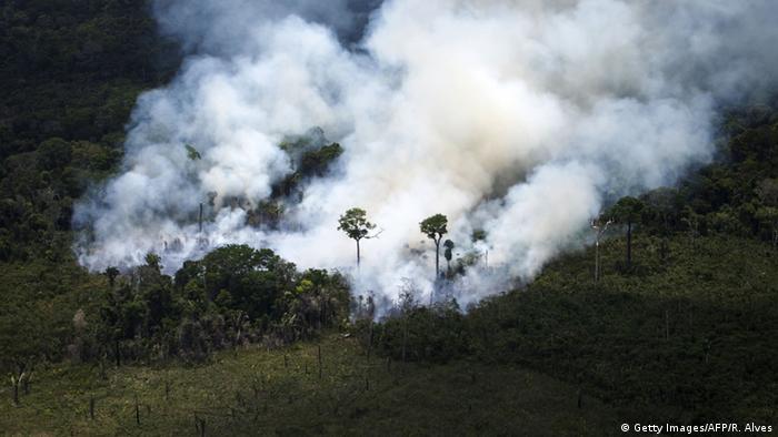 Queimada na Amazônia: em Paris, o Brasil se comprometeu, entre outras metas, a acabar com o desmatamento ilegal