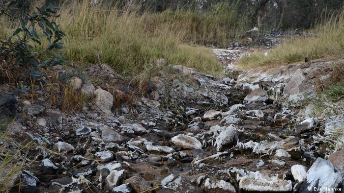 Durch chemische Reaktionen im Gestein versauern Grundwasser, Seen und Flüsse in Mpumalanga. Minerale lagern sich an der Oberfläche ab (Foto: Eva Mahnke)