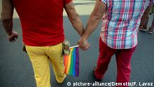 Santiago, Chile. 19th July 2014 -- A LGBT couple holding hands marches through the streets of Santiago to commemorate International Pride Day in Chile. -- Thousands of lesbian, gay, bisexual, transgender and heterosexual revelers celebrate the International Pride Day with a massive march in Santiago de Chile picture-alliance/Demotix/F. Lavoz