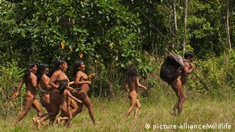 Aunque Ecuador no ha establecido el terreno de actuación, está previsto que abarque un área más de 250.000 hectáreas.