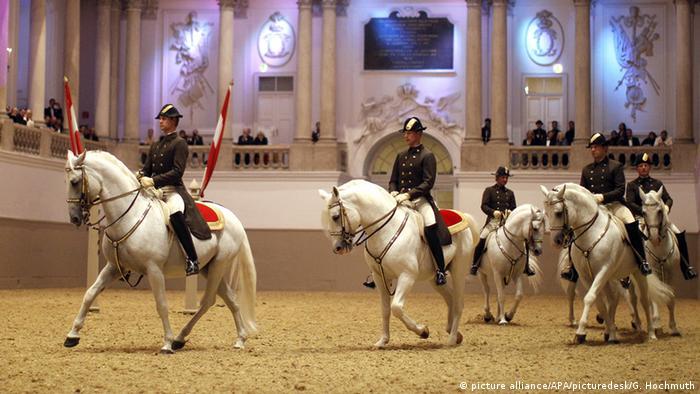 Die Spanische Hofreitschule Wien (Foto: picture alliance/APA/picturedesk/G. Hochmuth)