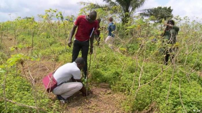 Africa on the Move activists plant seedlings, Ivory Coast