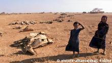 Äthiopien Dürre Kinder skelettierte Rinder