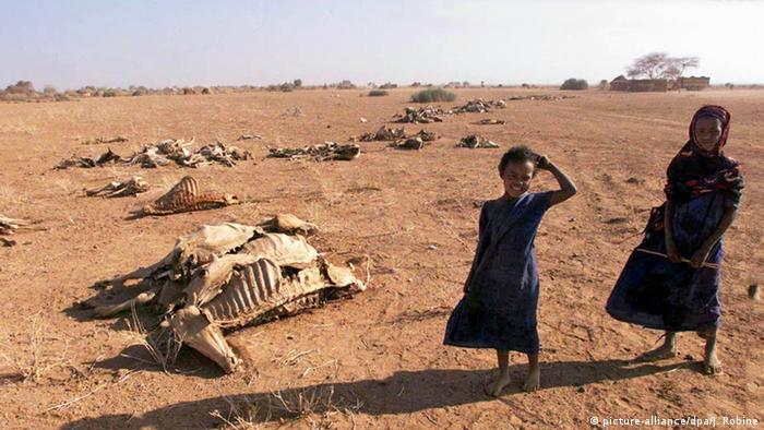 Äthiopien Dürre Kinder skelettierte Rinder (picture-alliance/dpa/J. Robine)