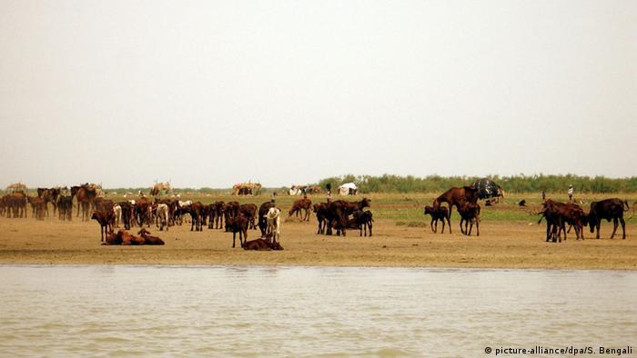 Zentralafrika, Tschadsee