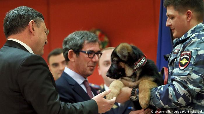 Russian policeman presents French ambassador with German Shepherd puppy, Dobrynya