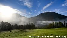 Bildergalerie Heidis Welt Alpenwiese im Schweizerischen Nationalpark zwischen der Alp Grimmels und Il Fuorn, aufgenommen am 7. August 2008. Der 1914 gegruendete Nationalpark im Engadin umfasst 170 Quadratkilometer und ist auch ein UNESCO-Biosphaerenreservat. (KEYSTONE/Gaetan Bally) Copyright: picture alliance/Keystone/G. Bally