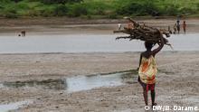 Ser mulher na Guiné-Bissau significa vida dura