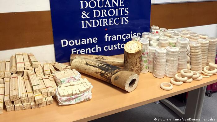 Ivory illegal seized by customs in Paris